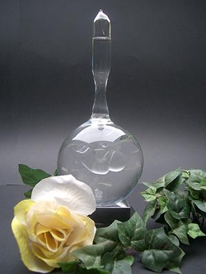 Foetus-Baby in glazen bol als rammelaar. Rammelaar is gevuld met gedestilleerd water € 145,00 (1)